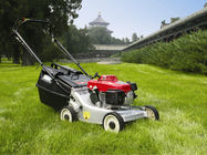Chine tondeuse à gazon autopropulsée de l'essence 173cc, machine de jardinage de trimmer d'herbe usine